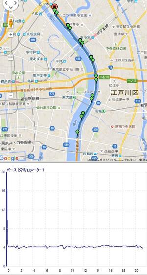 Tokyohalf